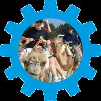 Kamelreiten in Tunesien